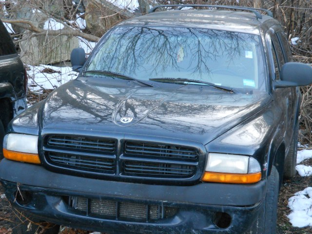 1999 Dodge Durango Base Master Photo