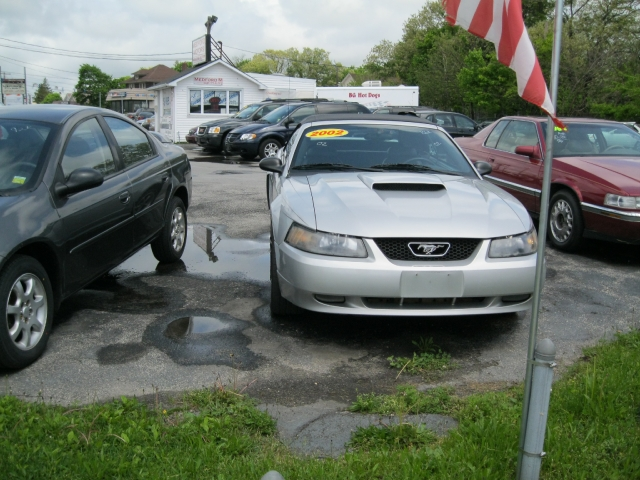 Image 3 of 2002 Ford Mustang GT…