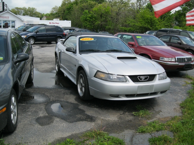 Image 4 of 2002 Ford Mustang GT…
